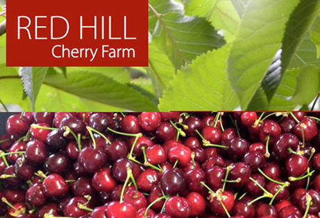 RH-Cherry-farm-mpp_gal1-855x425